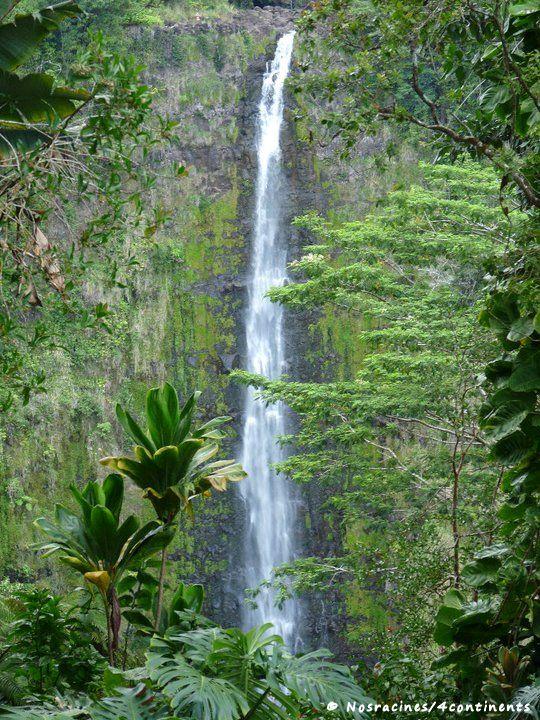 Akaka Falls State Park, Big Island, Hawaii - 2010