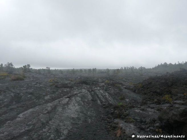 Chain of Craters Road, Parc national des volcans, Big Island, Hawaii - 2010