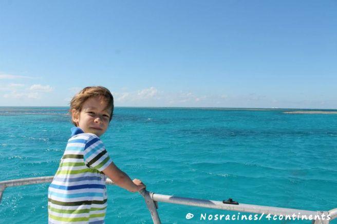 En bateau, pour aller plus près des coraux
