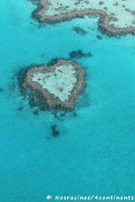 Récif en forme de cœur (Heart Reef)