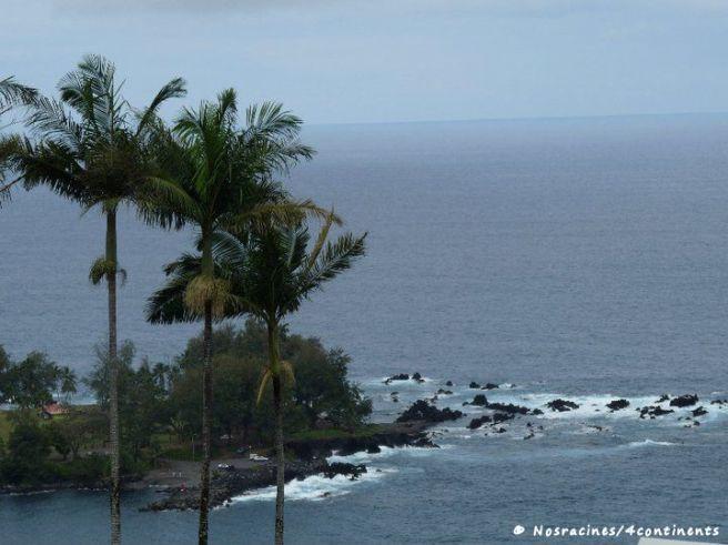 Laupahoehoe Beach Park, Big Island, Hawaii - 2010