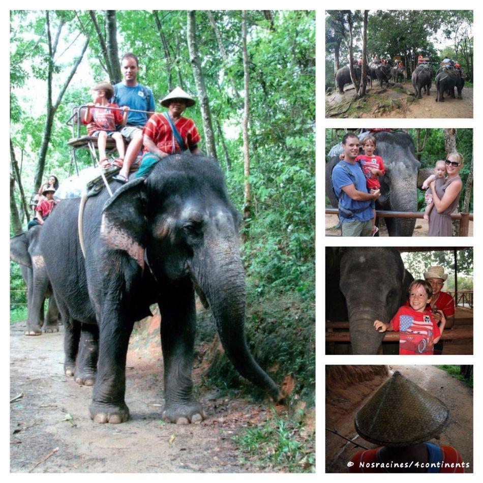 PicPlayPostPhoto-éléphant