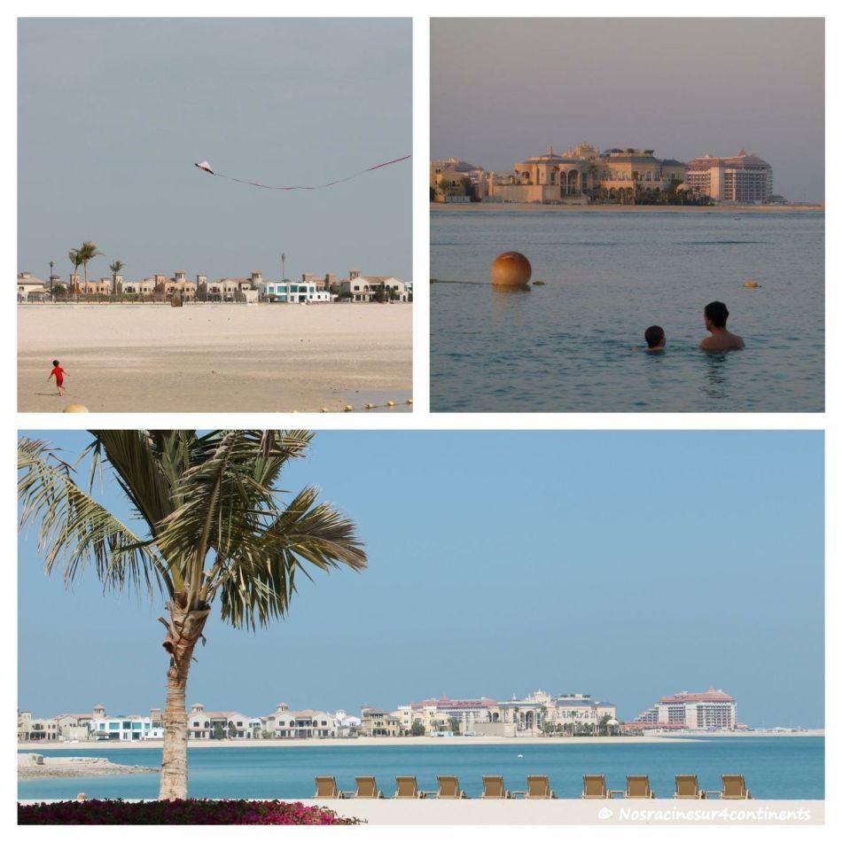 Shoreline Résidences, Palm Jumeirah - 2011 & 2012
