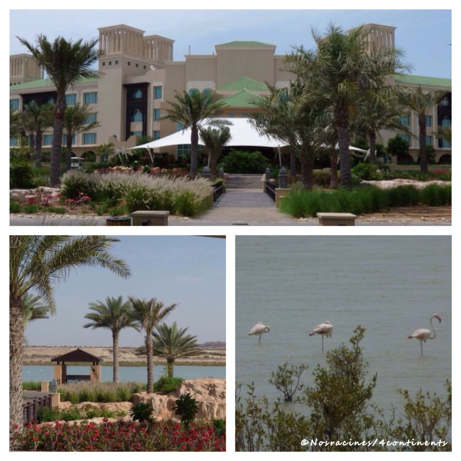 Desert Island Resort & Spa, Sir Bani Yas Island - 2010