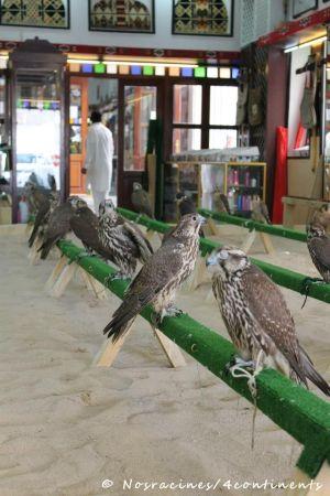 Quartier des faucons, Souk Waquif, Doha, Qatar