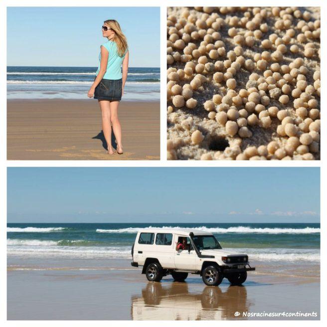 75 Mile Beach, Fraser Island - 2012