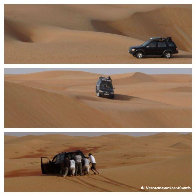 Empty Quarter, Liwa, Abu Dhabi - 2010