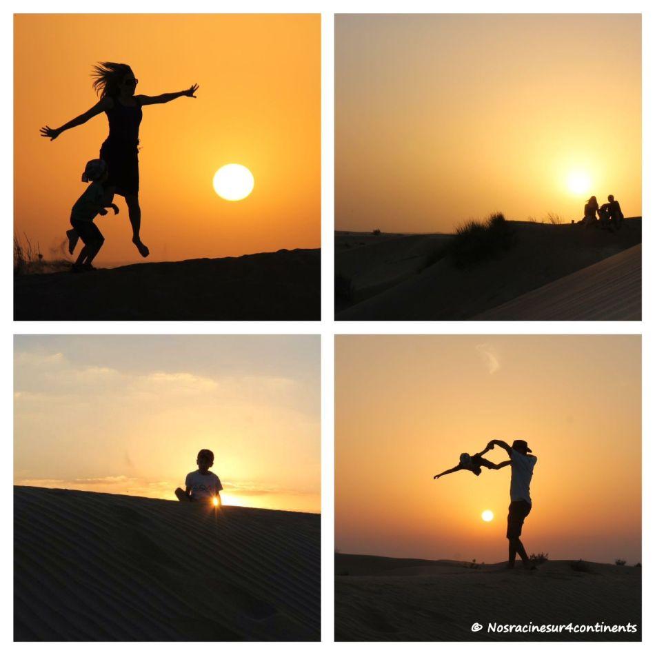Désert de Dubaï - 2013
