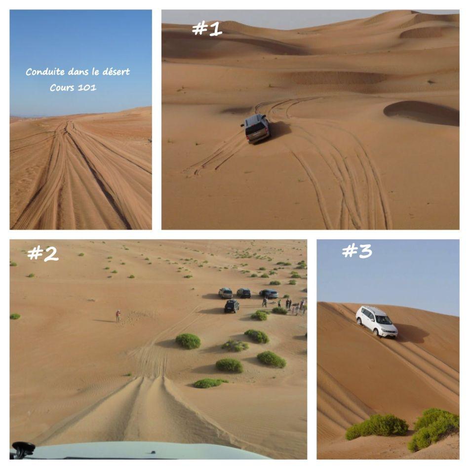 Cours 101 de conduite dans le désert