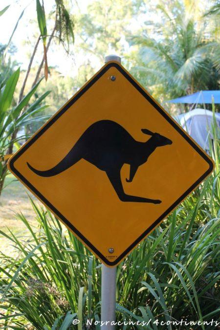 Les panneaux typiquement australiens