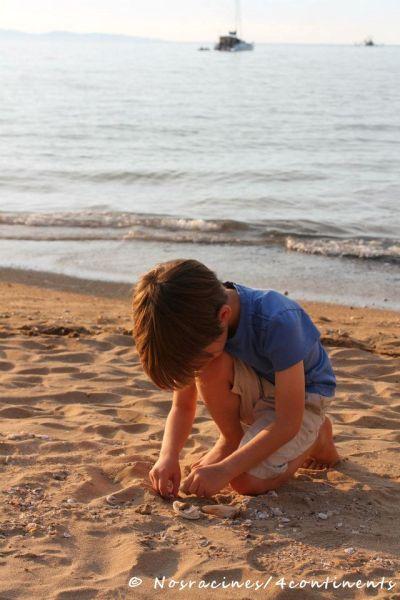 Recherche de coquillages, plage de Horseshoe Bay