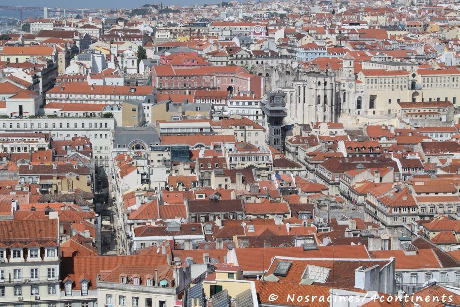 Lisbonne, une ville magnifique... Mais attention aux cafards!