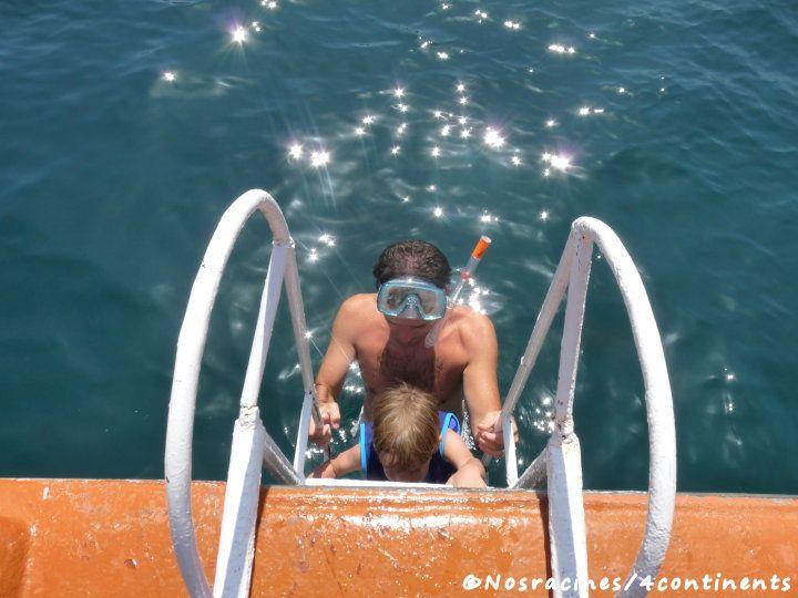 Un petit tour dans l'eau pour découvrir la faune marine de la région