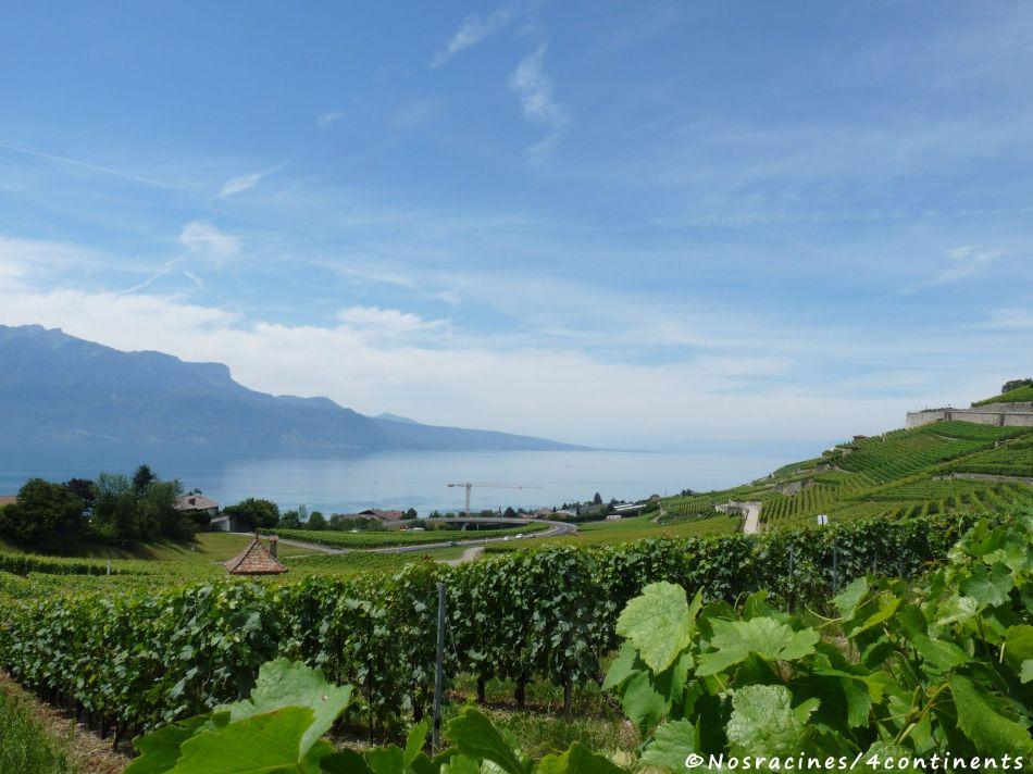 Panorama de Jongny, Suisse