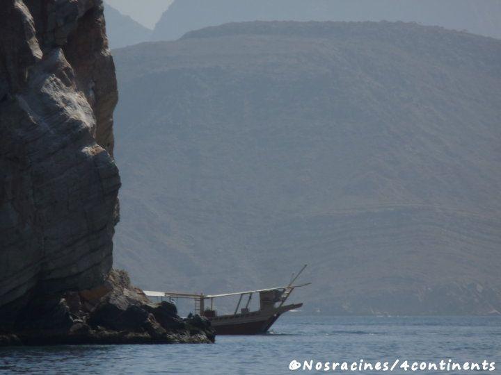 Nous voguons tranquillement le long des fjords