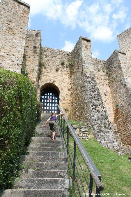 L'entrée Sud du château de la Madeleine