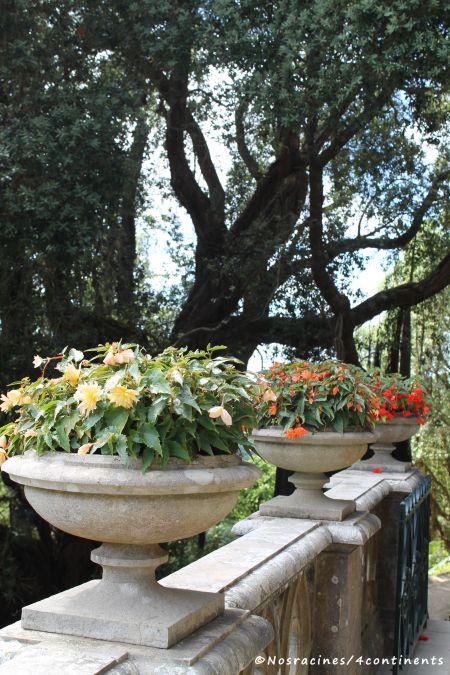 Les arrangements floraux s'harmonisent parfaitement aux couleurs du palais