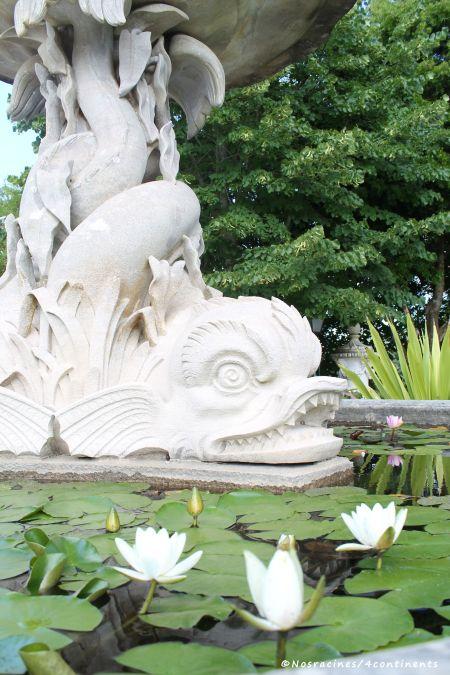 Les nénuphars de la Fontaine du Triton, à l'entrée du Palais de Monserrate