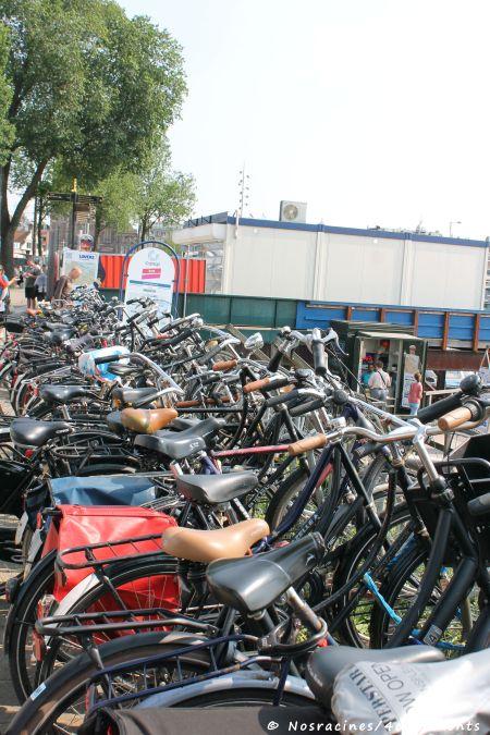 Des vélos à profusion... Trouver un endroit où se garer relève du défi permanent!
