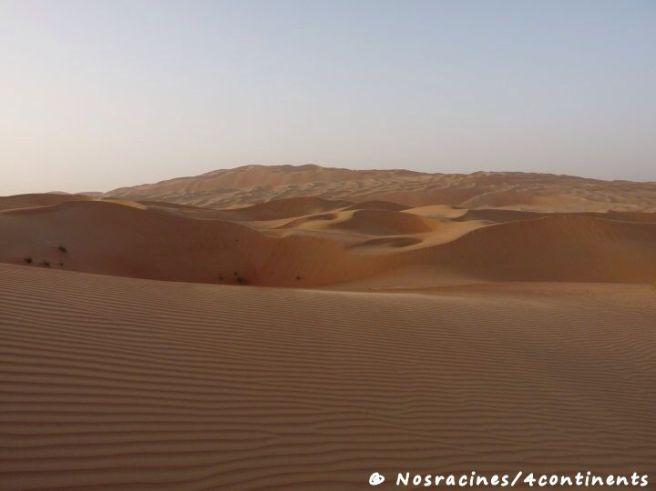 Le désert de l'Empty Quarter, Liwa