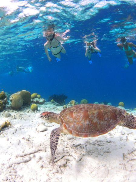 En plongée sur l'île de Klein Bonaire, une expérience qui aurait été plus difficile à vivre avec de jeunes enfants... quoique j'étais alors enceinte de deux mois!