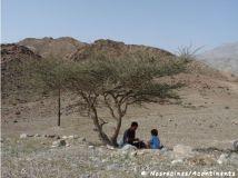 Fujairah13