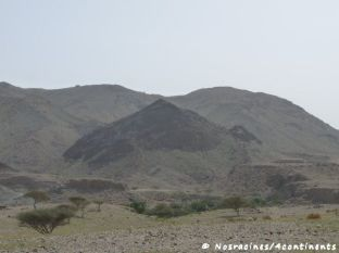 Fujairah14