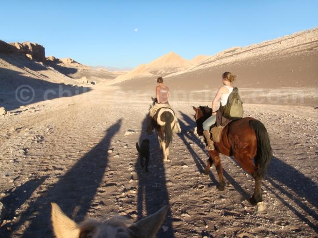 Vallée de la lune - Balade à cheval