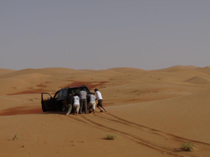 auto_desert