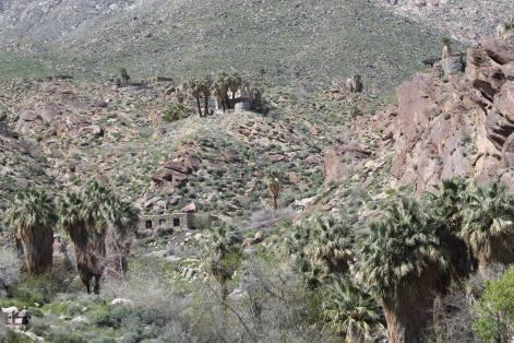 Indian_Canyon_5