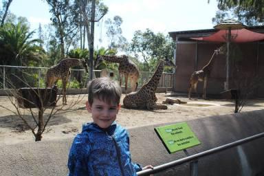 Zoo_San_Diego_2