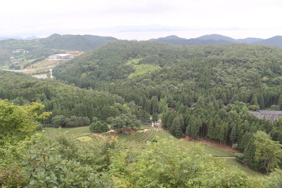 Boseong_15