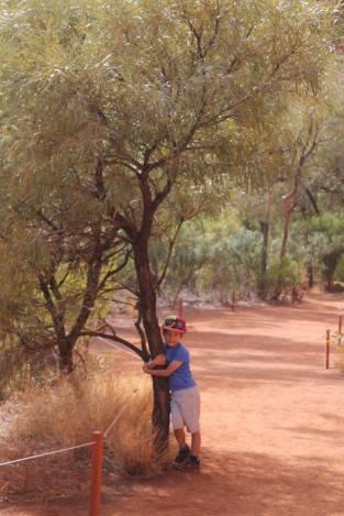 Uluru_12