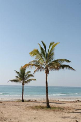 Mughsayl Beach_4