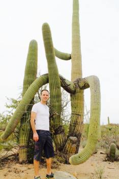 Saguaro_National_Park_9